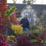 Wild-Thyme-Cottage